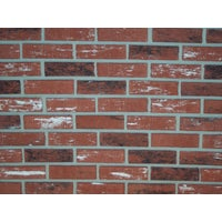 INCA Z-Brick Facing Brick