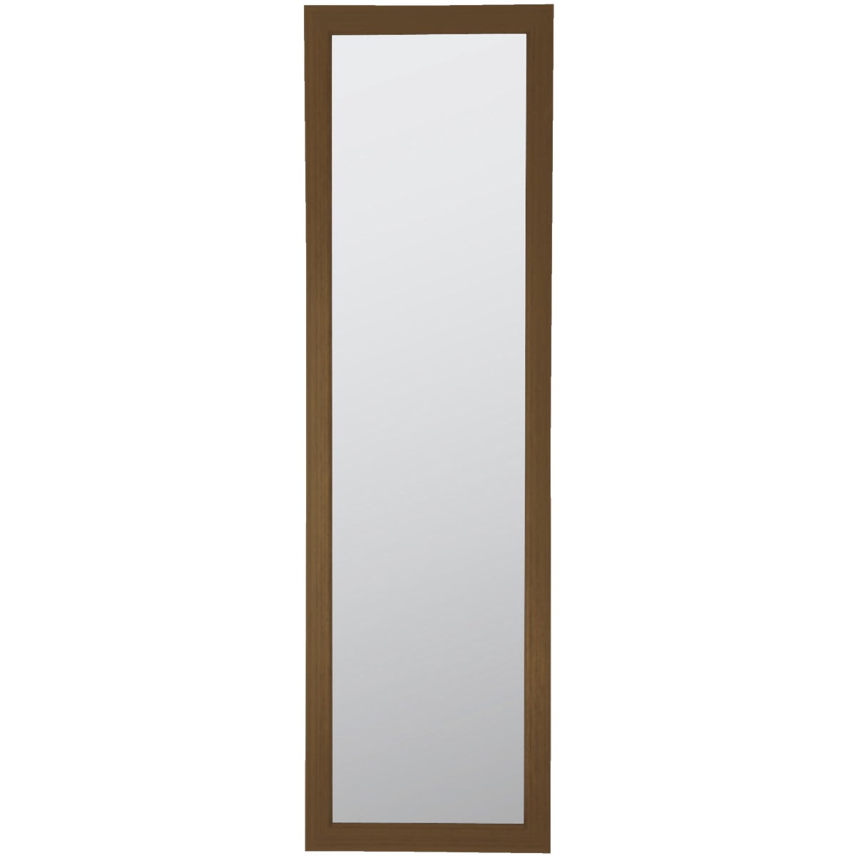 RAVEN BRZ DOOR MIRROR - 20-2487 by Home Decor Innovatns