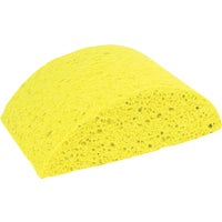 Turtleback Sponge