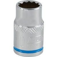 DIB Tool Imports 10MM 3/8 DRIVE SOCKET 308129