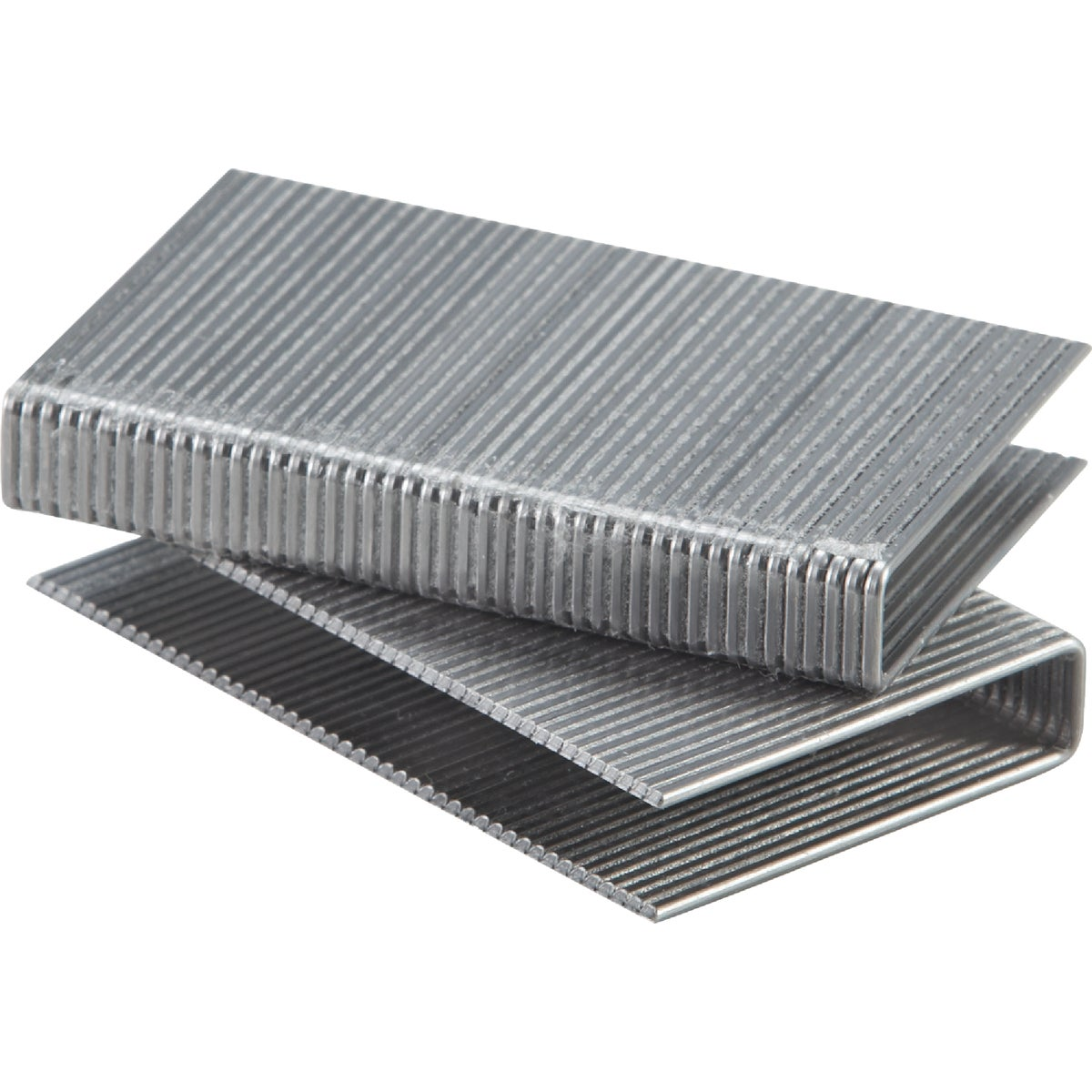 "500PK 2"" FLOORING STAPLE"