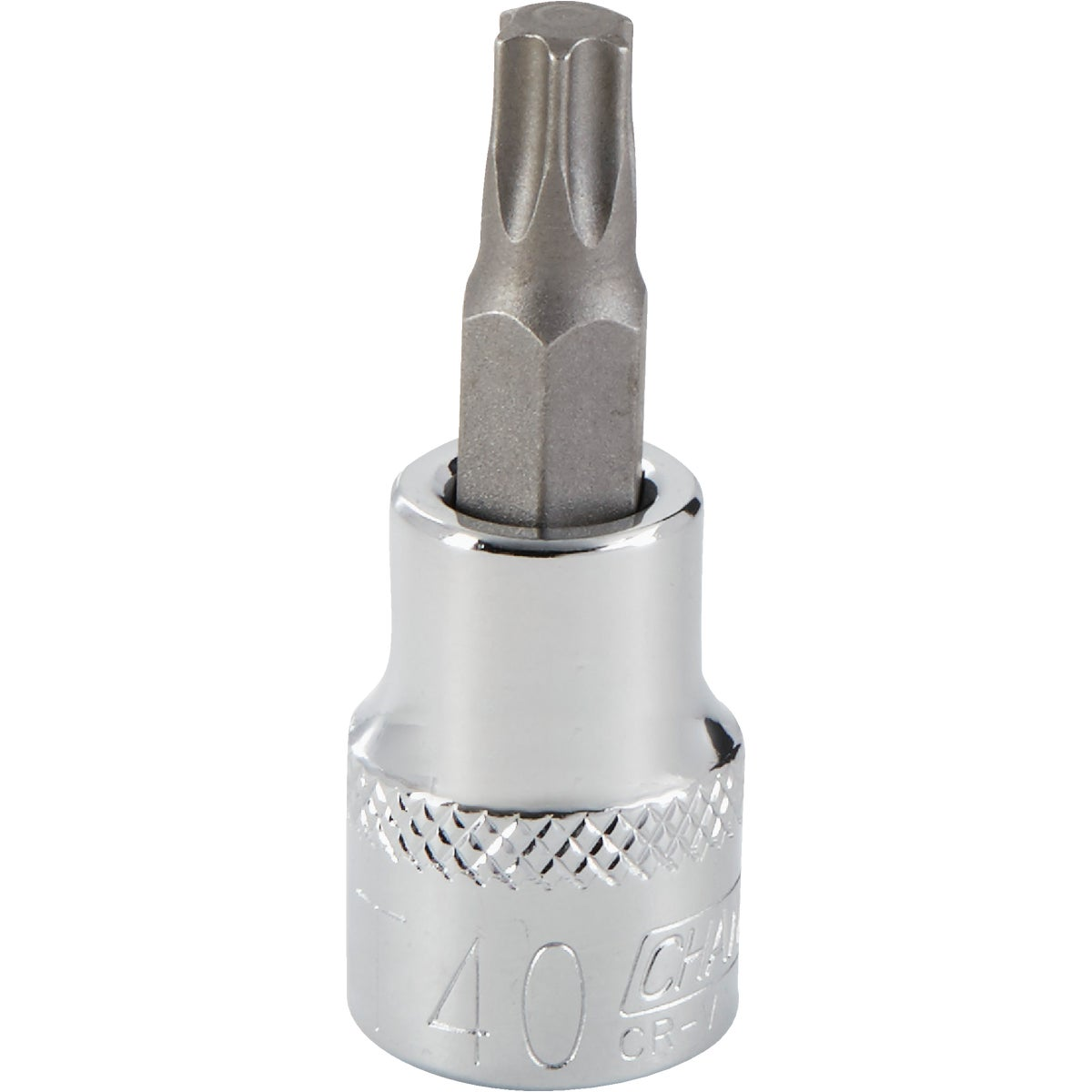 T40 TORX BIT SOCKET - 370029 by Bwt Inc