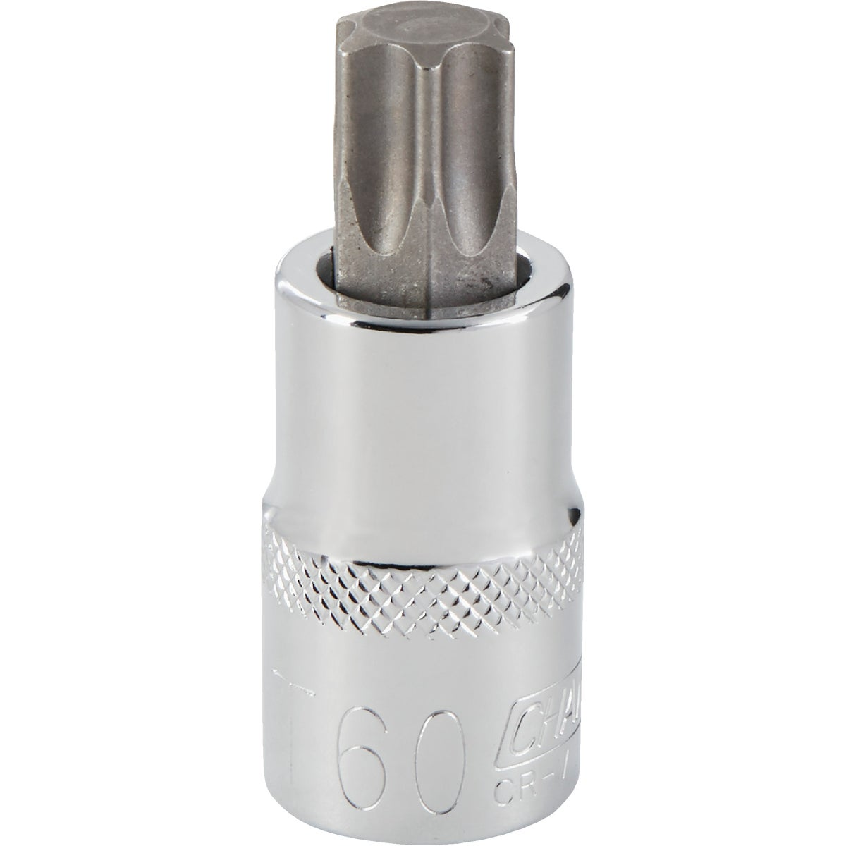 T60 TORX BIT SOCKET - 371025 by Bwt Inc