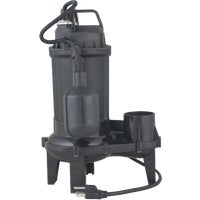 Flint Walling/Star 4/10 SEWAGE PUMP 4EP