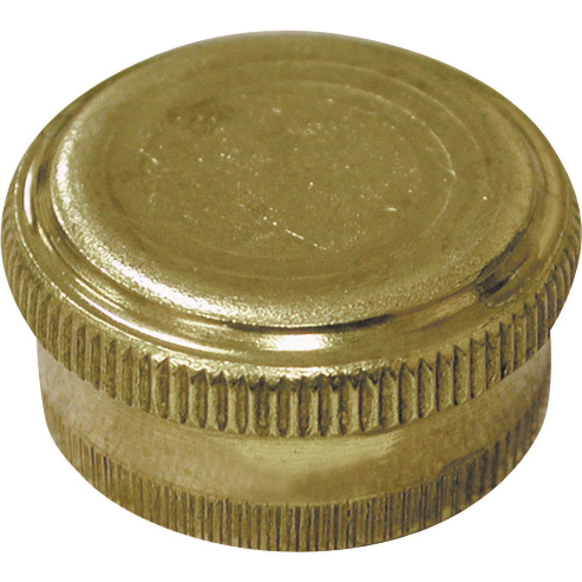 BRASS HOSE CAP - G20-155 by Jones Stephens Corp