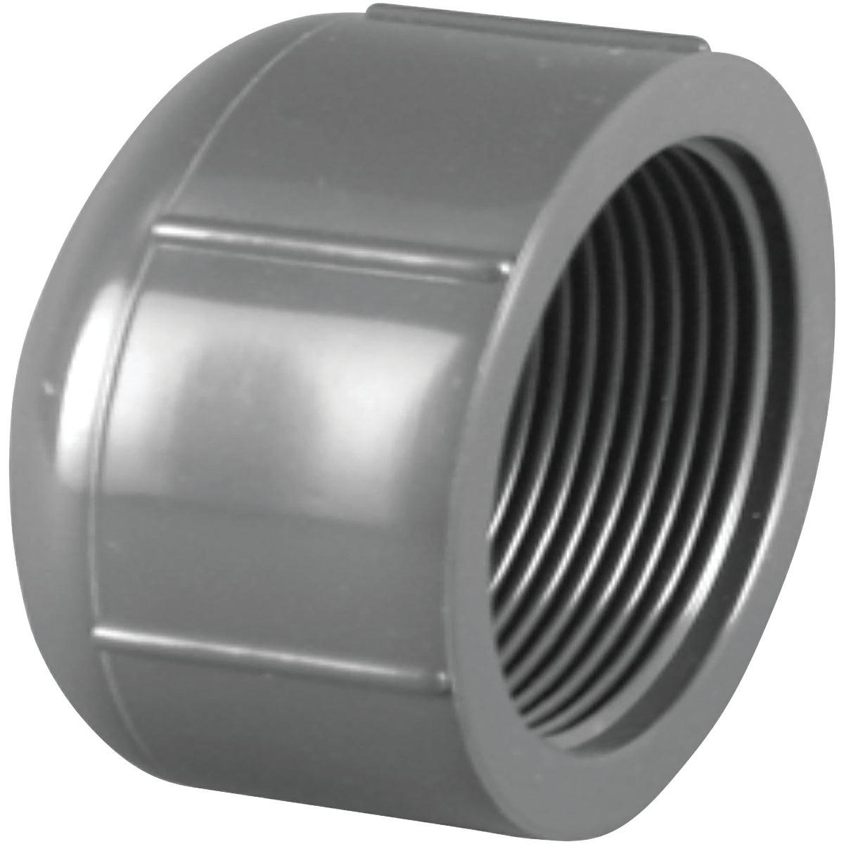"1/2""FIP SCH80 PVC CAP - 301658 by Genova Inc"