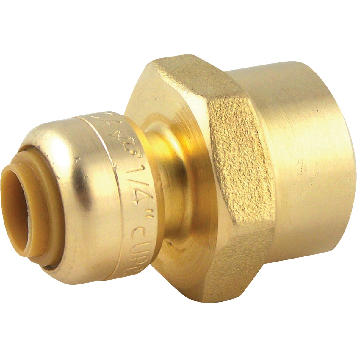 "1/4""X1/2""F COUPLING - U066LFA by Cash Acme"