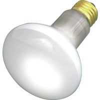 GE Lighting 30W REFLECTOR BULB 14891 30R20