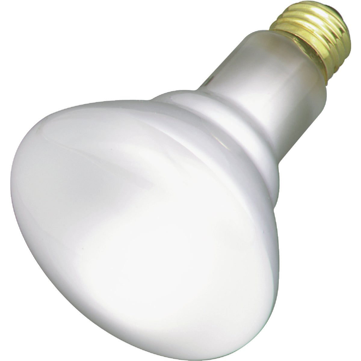 65W REFLECTOR BULB - 20331 65R/FL/MI by G E Lighting