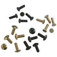 Westinghouse Lighting ASTD FAN SCREWS 77016