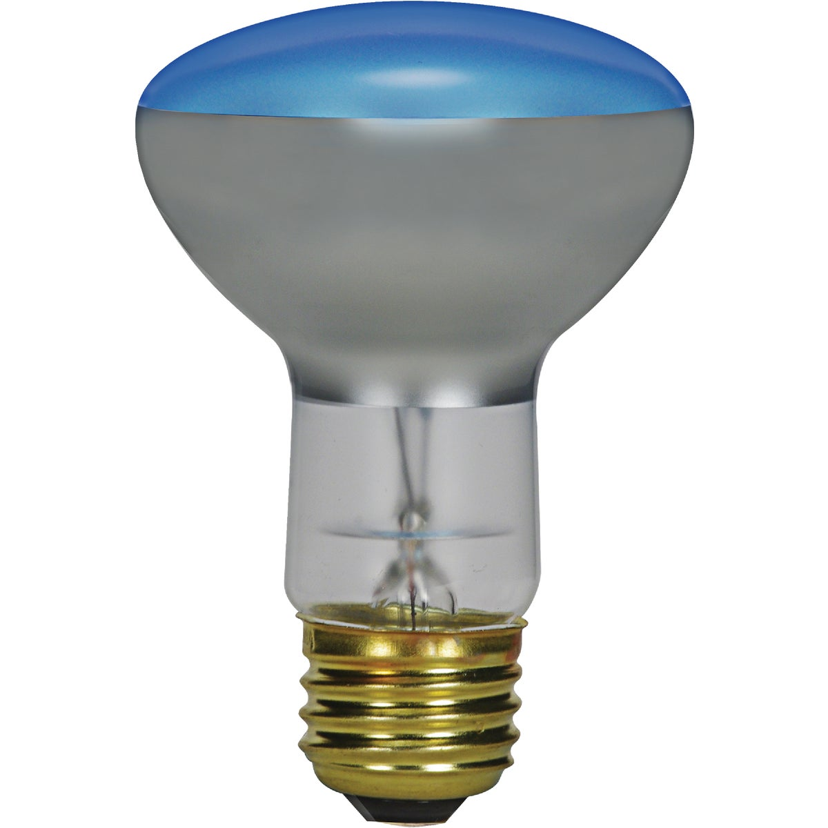 65W PLANT LIGHT BULB - 20996 65R30/PL by G E Lighting