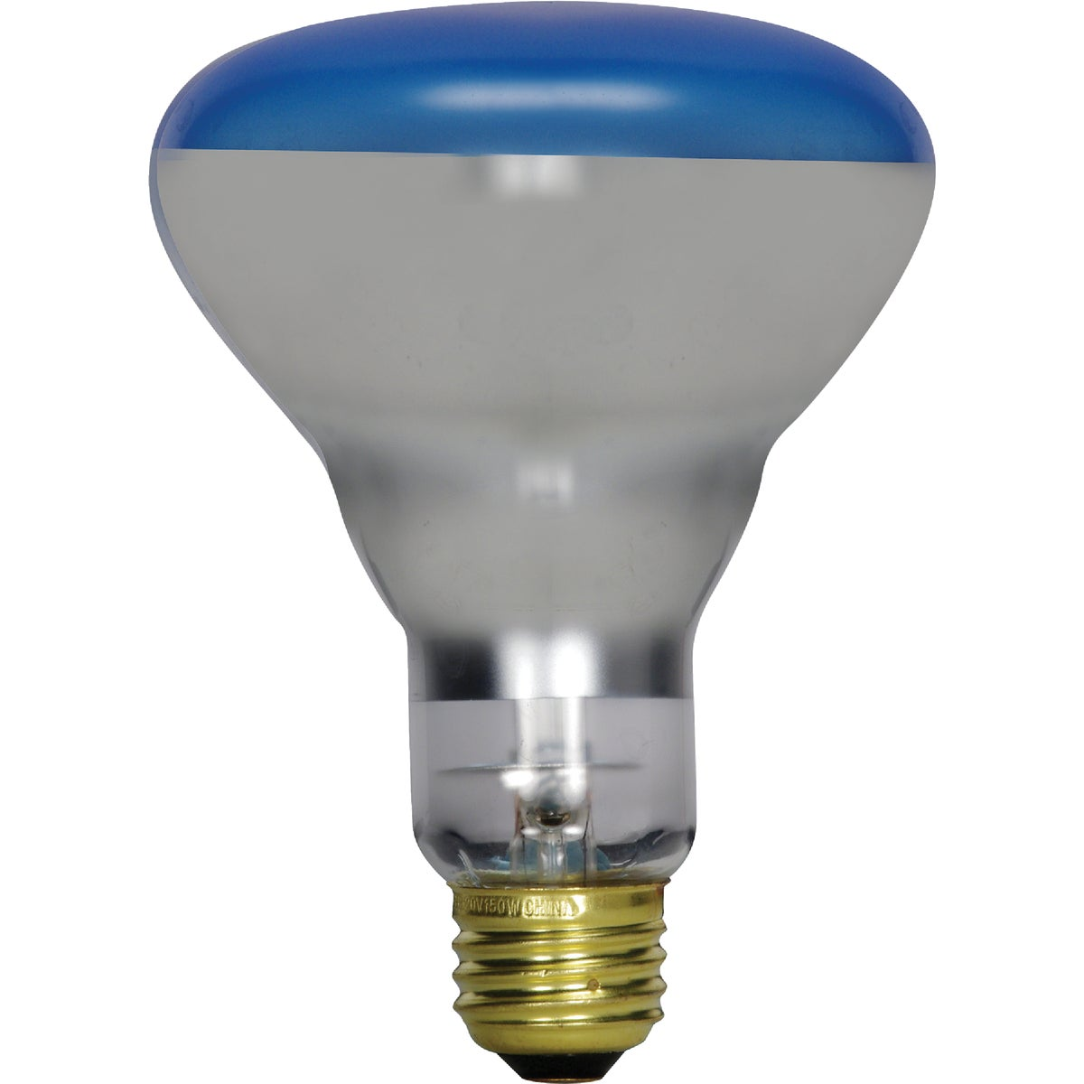 120W PLANT LIGHT BULB - 21000 120R40/PL by G E Lighting