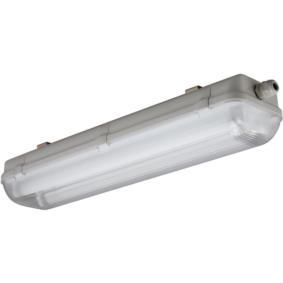 4' T8 2BULB ENCL FIXTURE - XWL 232 120 RE by Lithonia Lighting