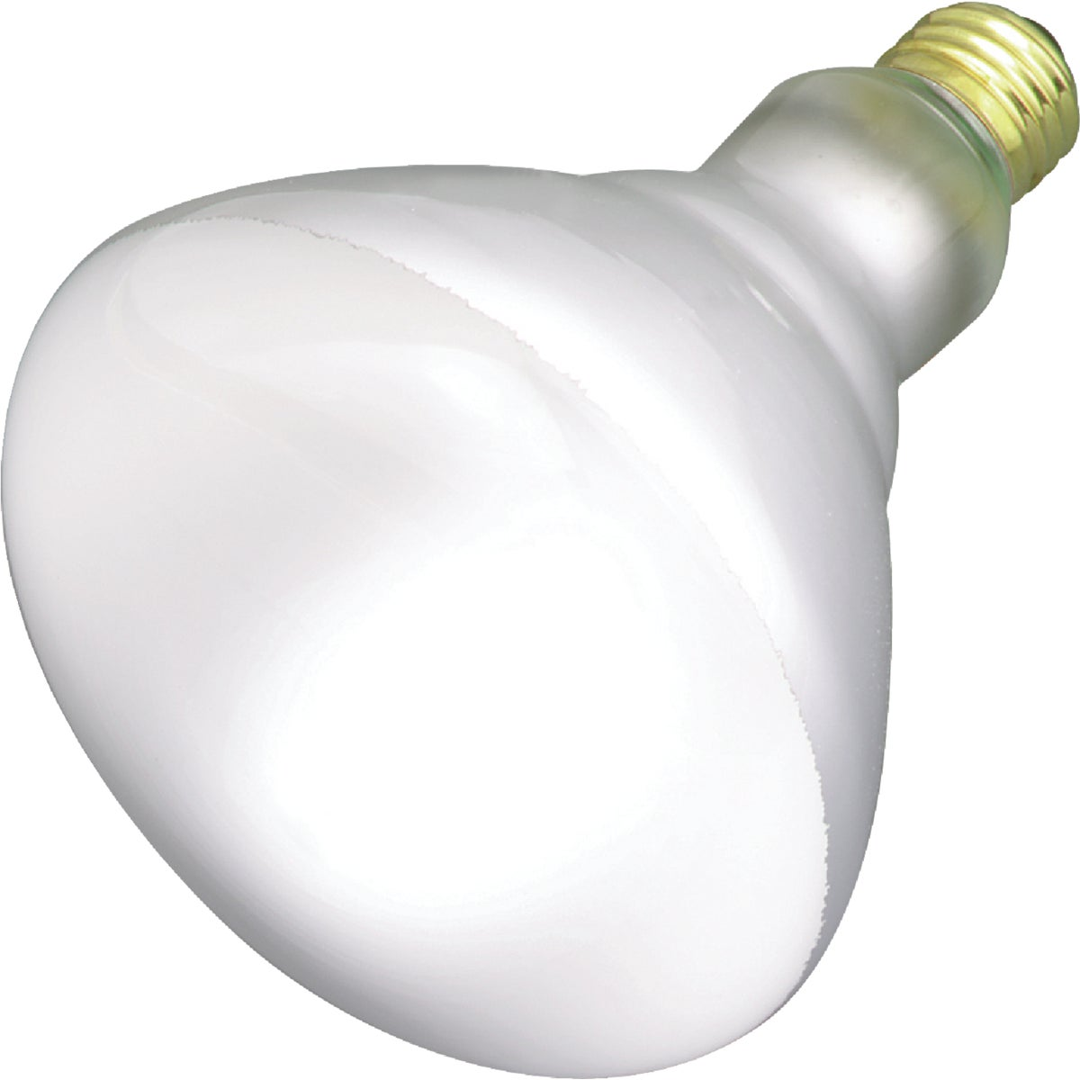 65W R40 REVEAL BULB - 87904 65R40/FL/RVL by G E Lighting