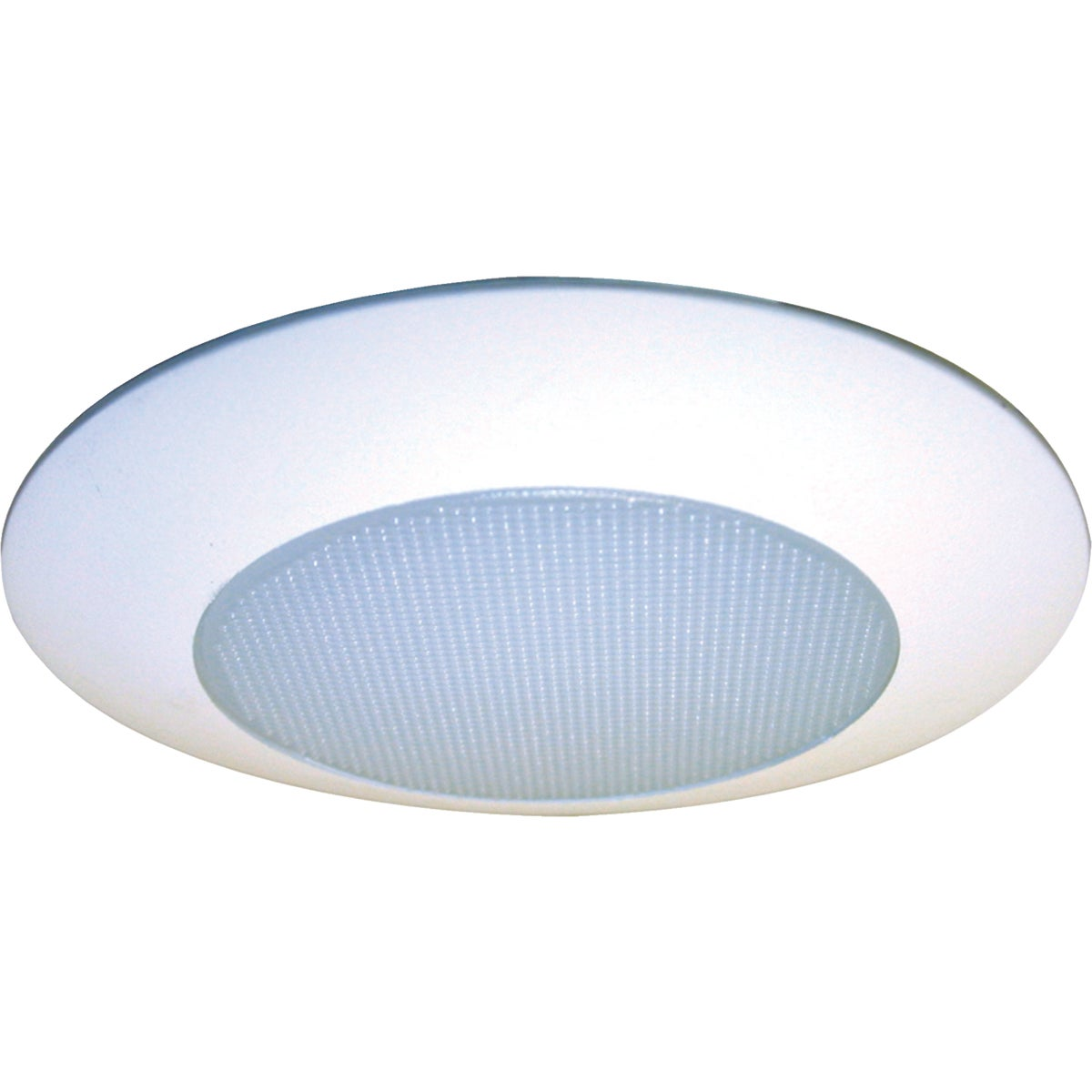 "6"" SHOWER LIGHT"