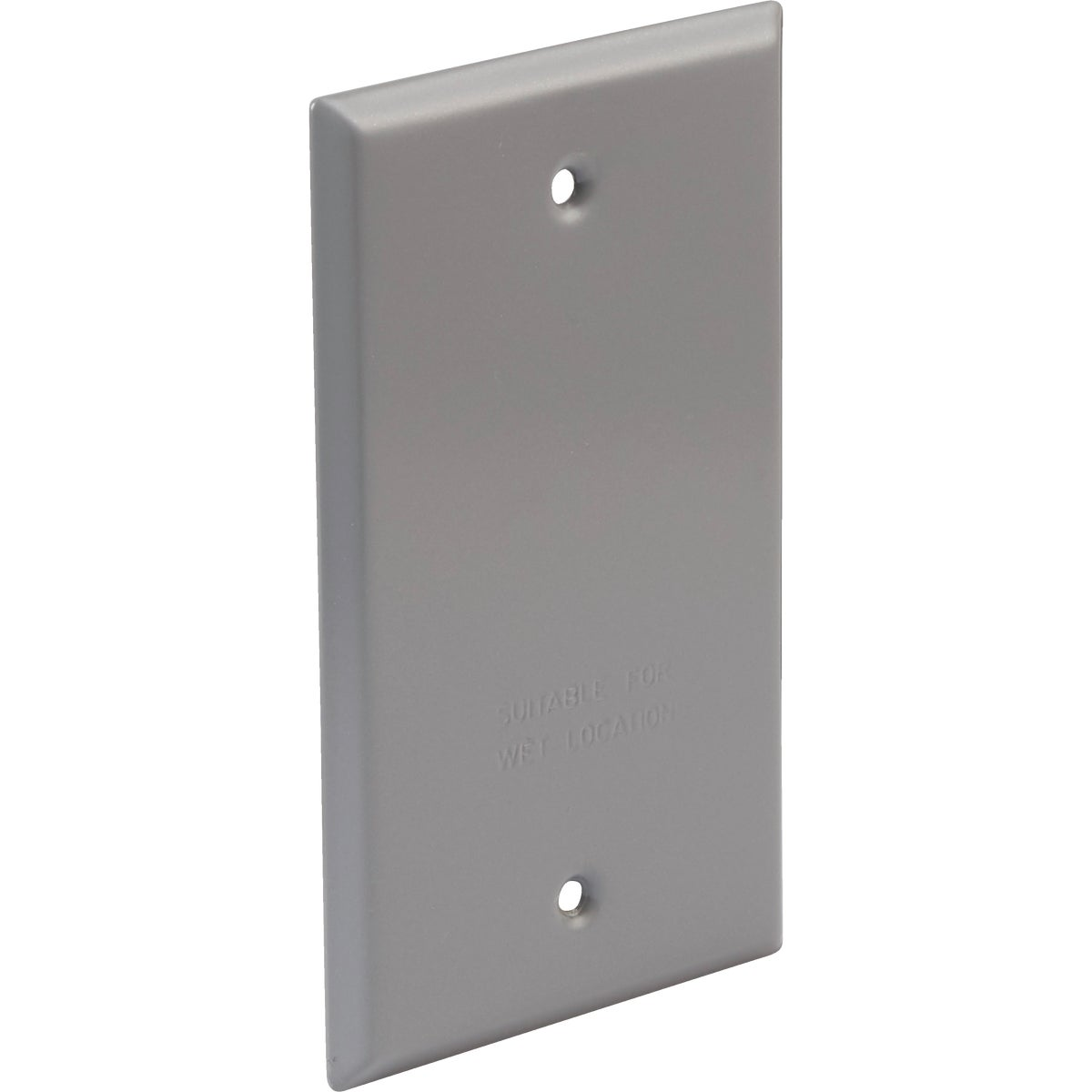 GRAY OUTDR BLANK COVER - 5973-0 by Hubbell