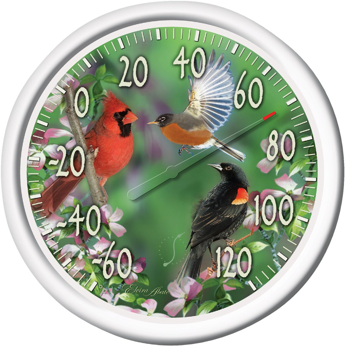 BIRDS DIAL THERMOMETER - 90007-217 by Taylor Precision