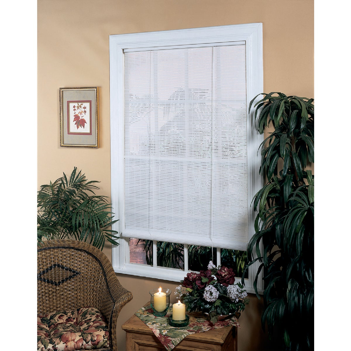 48X72 WHT ROLL-UP BLIND - 0320146 by Lewis Hyman