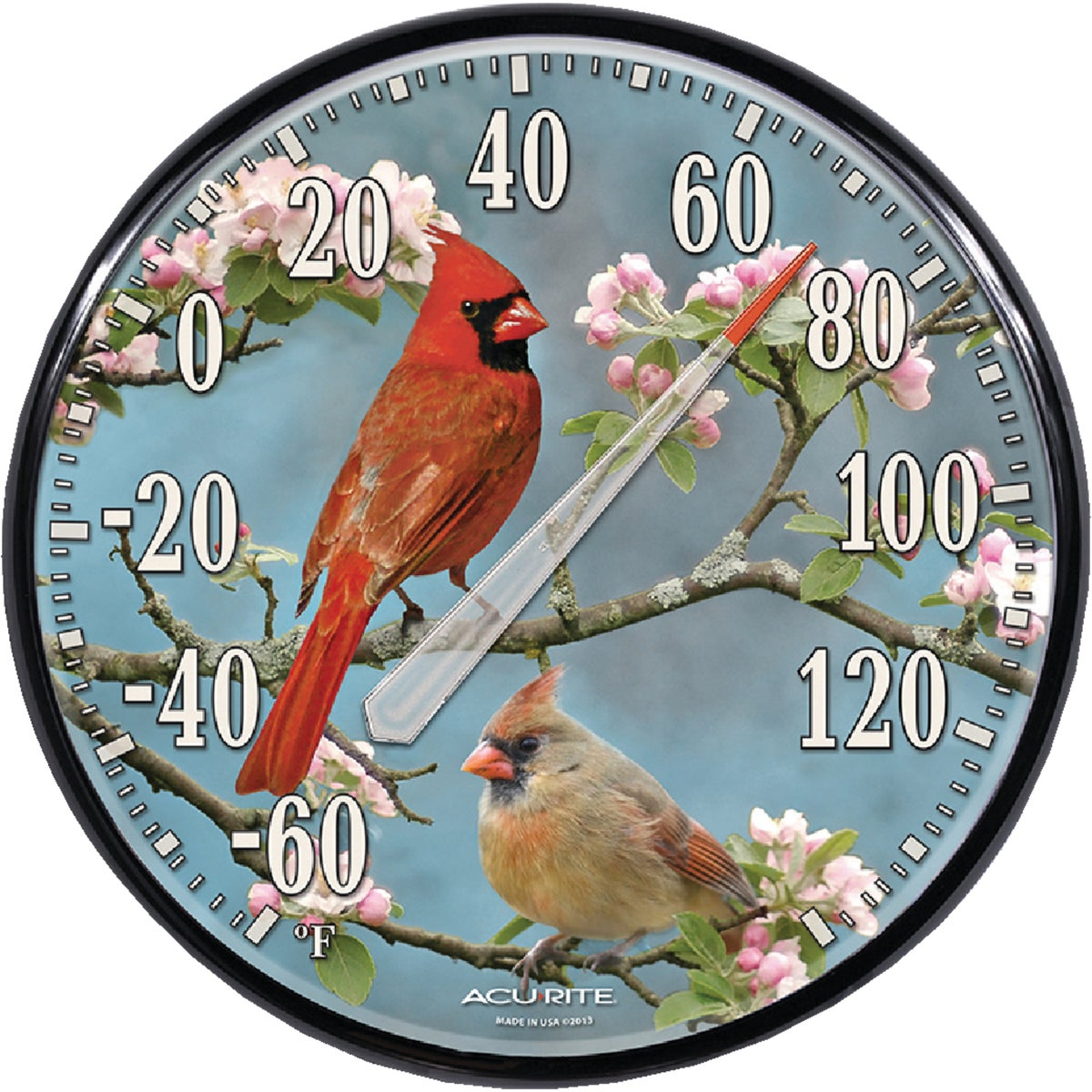 CARDINAL THERMOMETER - 01597A1 by Chaney Instrument Co