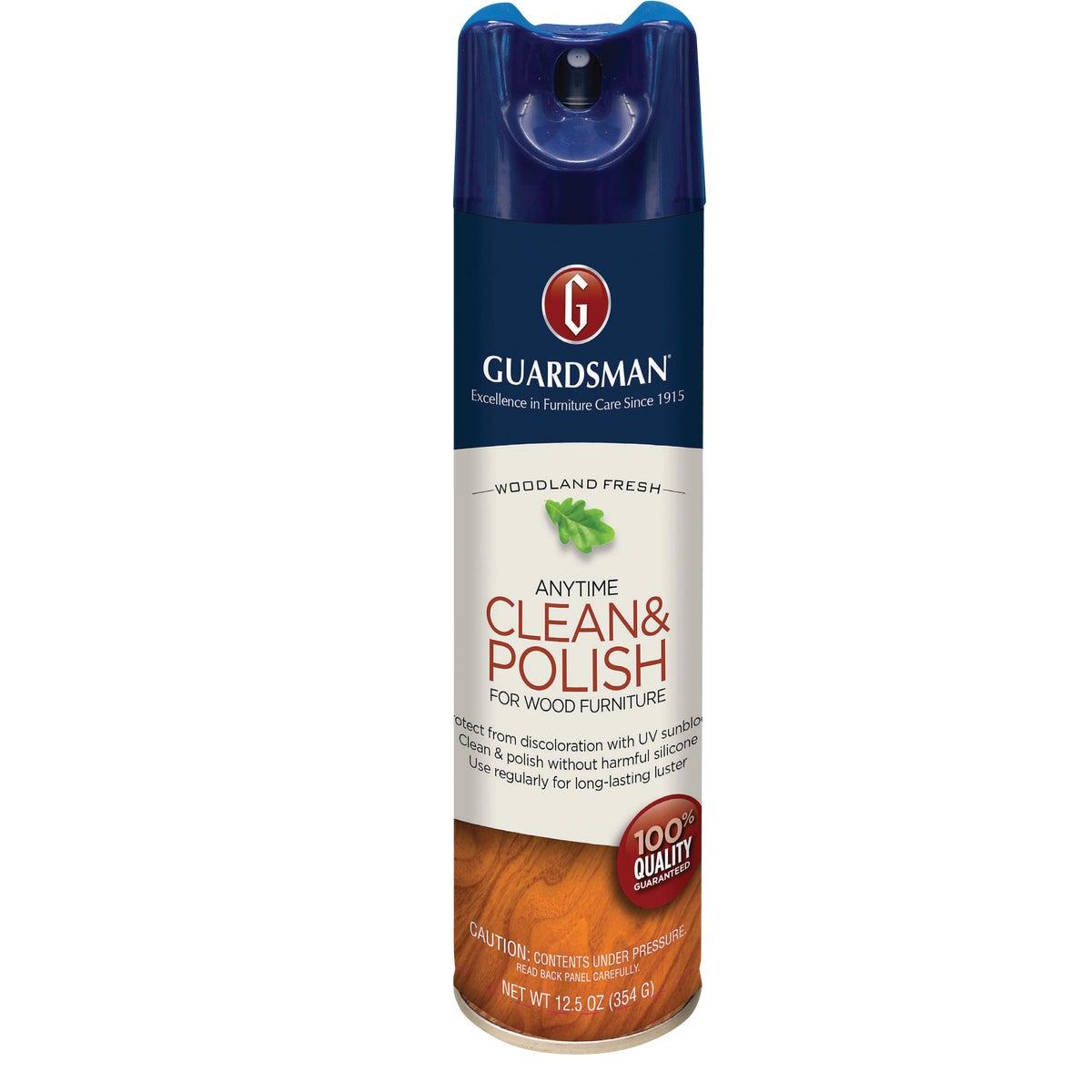 12.5OZ WDLN CLEAN&POLISH