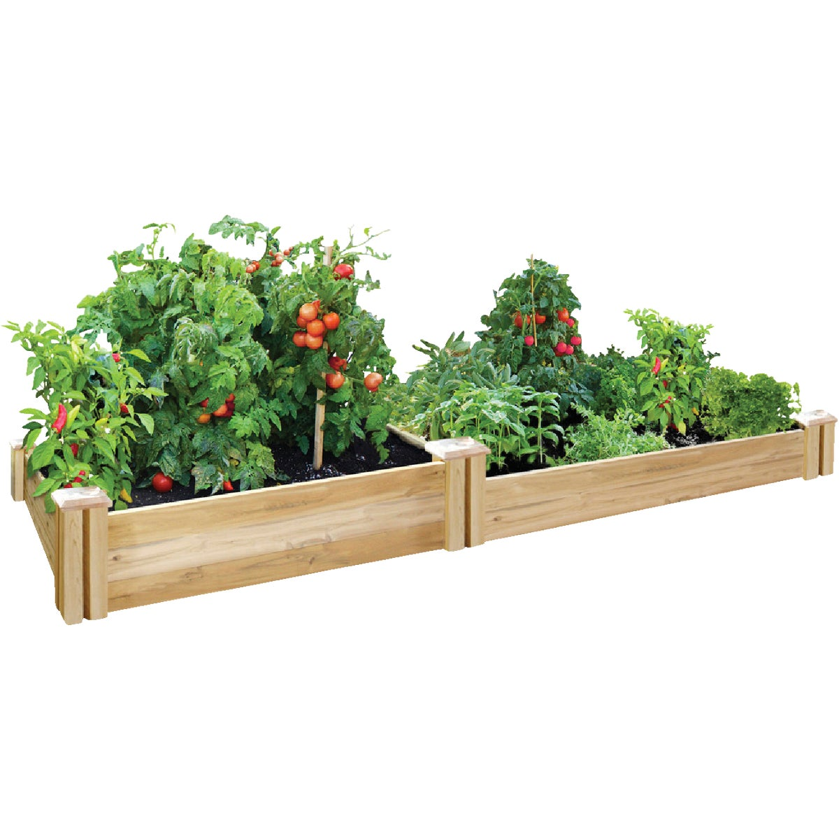 4'X8'CEDAR RAISED GARDEN - RC4C8T2 by Greenes Fence Co