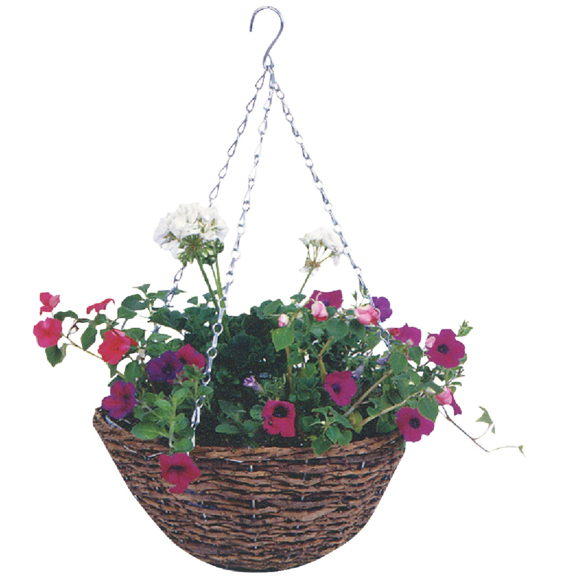 "14"" RATTN HANGING BASKET - R450 by Gardman Usa Inc"