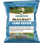 Jonathan Green Lawn/Grass Patch and Repair