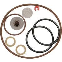 ProSeries Seal Repair Sprayer Parts Kit, 986673