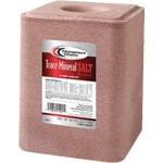 Champions Choice Trace Mineral Salt Block