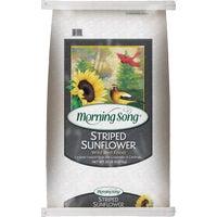 Valley Splendor Striped Sunflower Seed, 48011-D