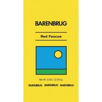 Barenbrug USA 50#CREEP RED FESCUE SEED 14650