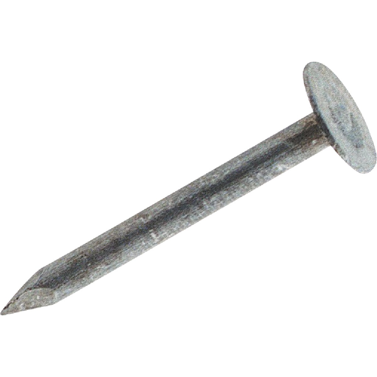 "1LB 3"" EG ROOF NAIL - 723497 by Primesource"