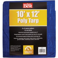 Do it Best GS Tarps 10X12 BLUE AP TARP 725317