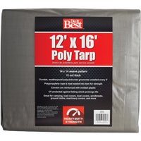 Do it Best GS Tarps 12X16 SLVR H/DUTY TARP 725633