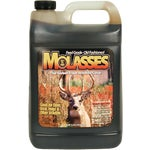Molasses Sweet Treat