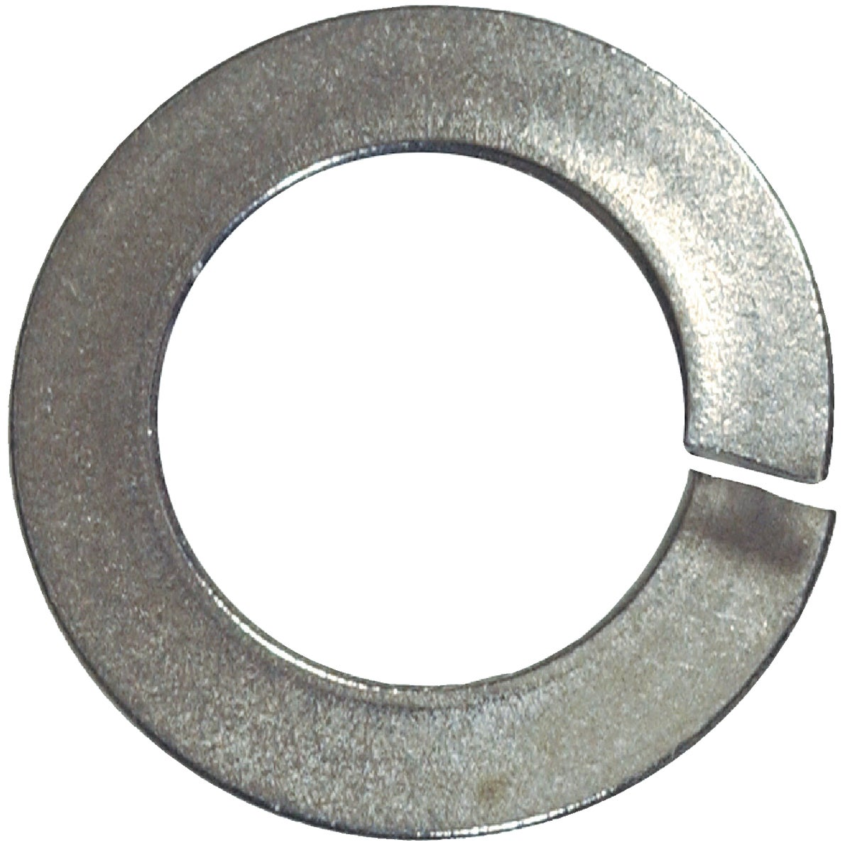 "1/4""SS SPLIT LOCK WASHER - 830666 by Hillman Fastener"