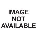 Garden Song Magnolia Hummingbird Feeder