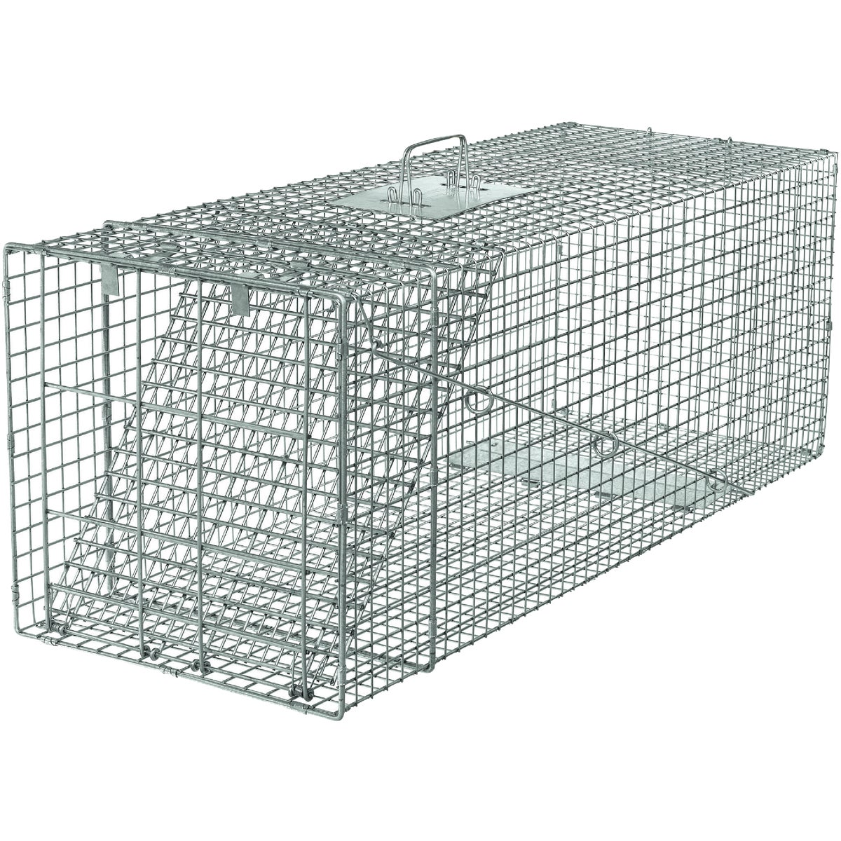 42X15X15 LG RACCOON TRAP - 1081 by Woodstream Corp