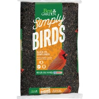 Valley Splendor Black Oil Sunflower Seed, 50057-D
