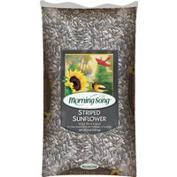 Valley Splendor Striped Sunflower Seed, 387