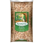 Peanuts In A Shell Squirrel Food