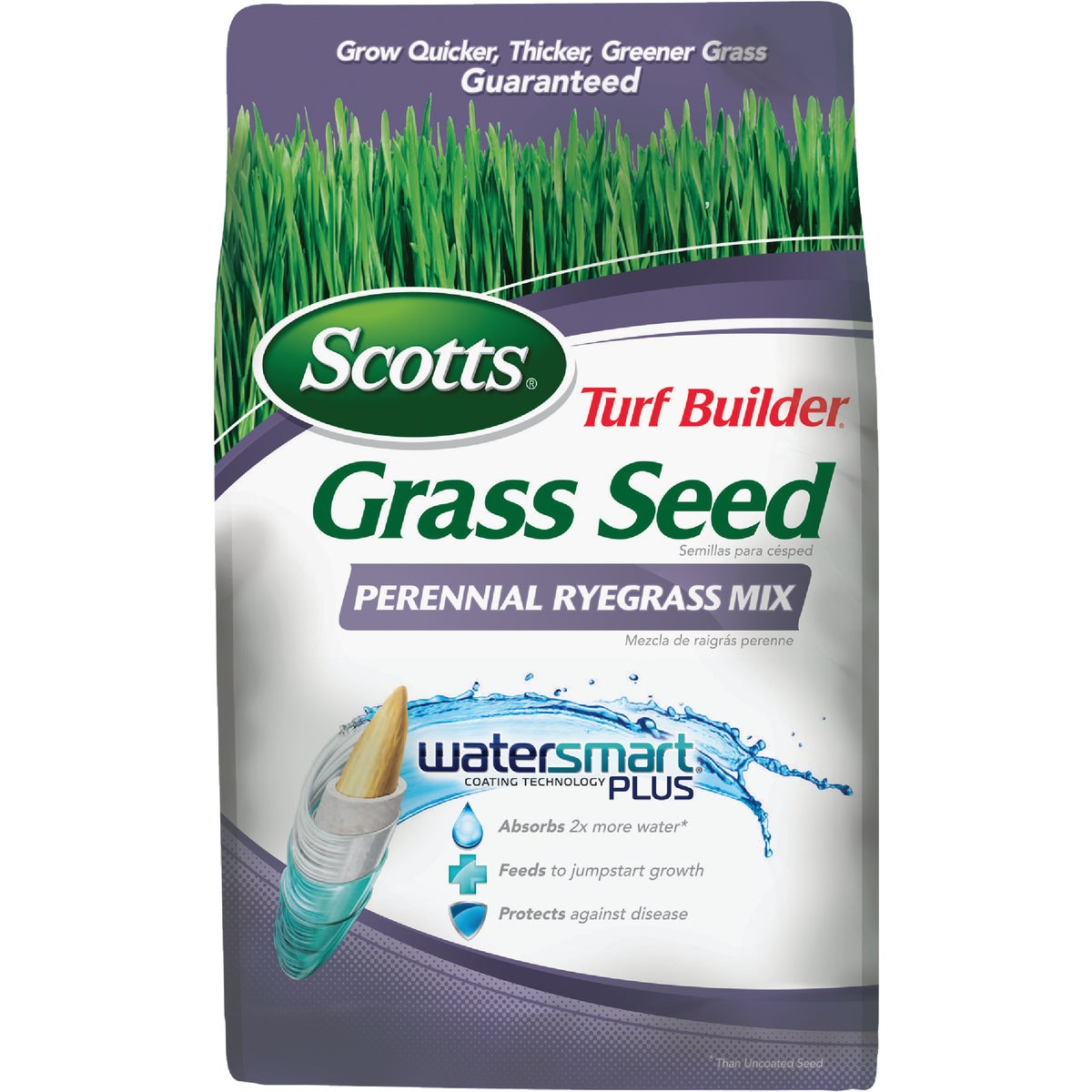 3LB TB PERENIAL RYEGRASS - 18260 by Scotts Company
