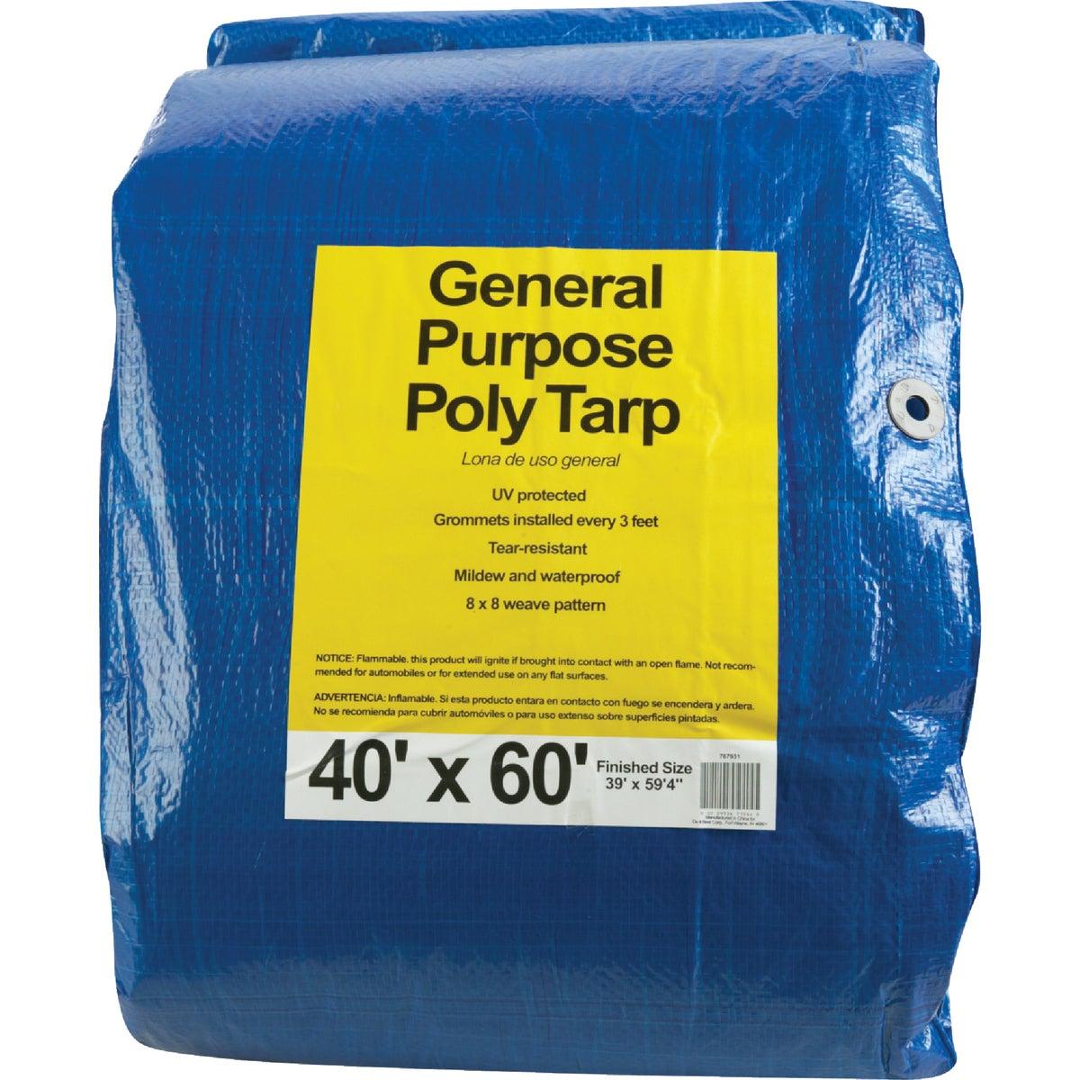 40X60 BLUE AP TARP