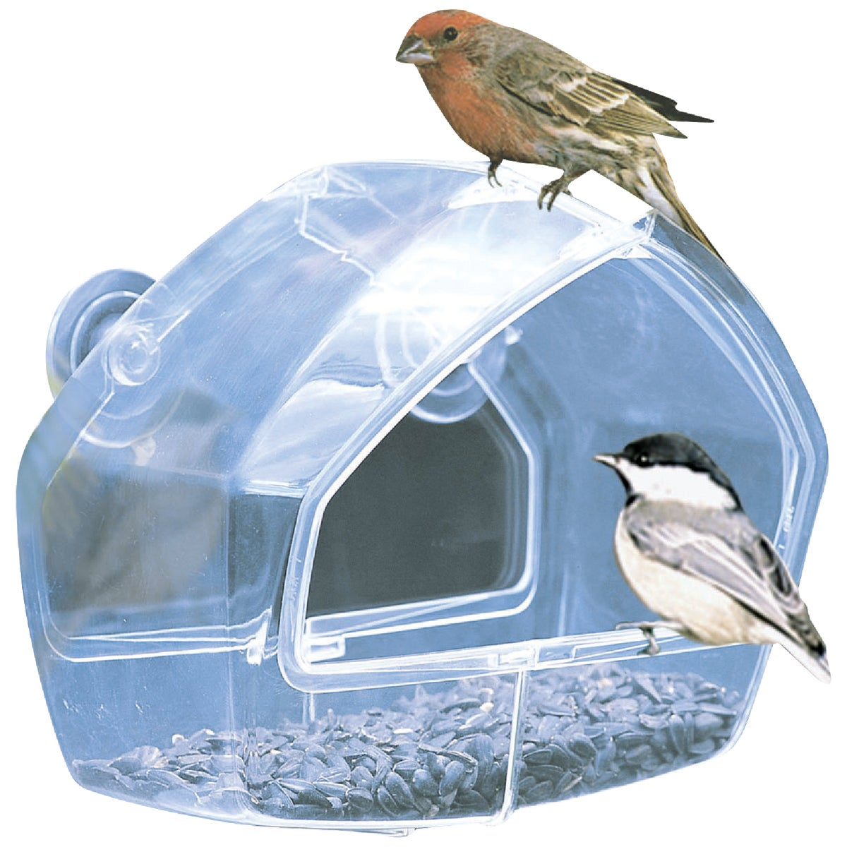 WINDOW BIRD FEEDER - 348 by Woodstream Corp