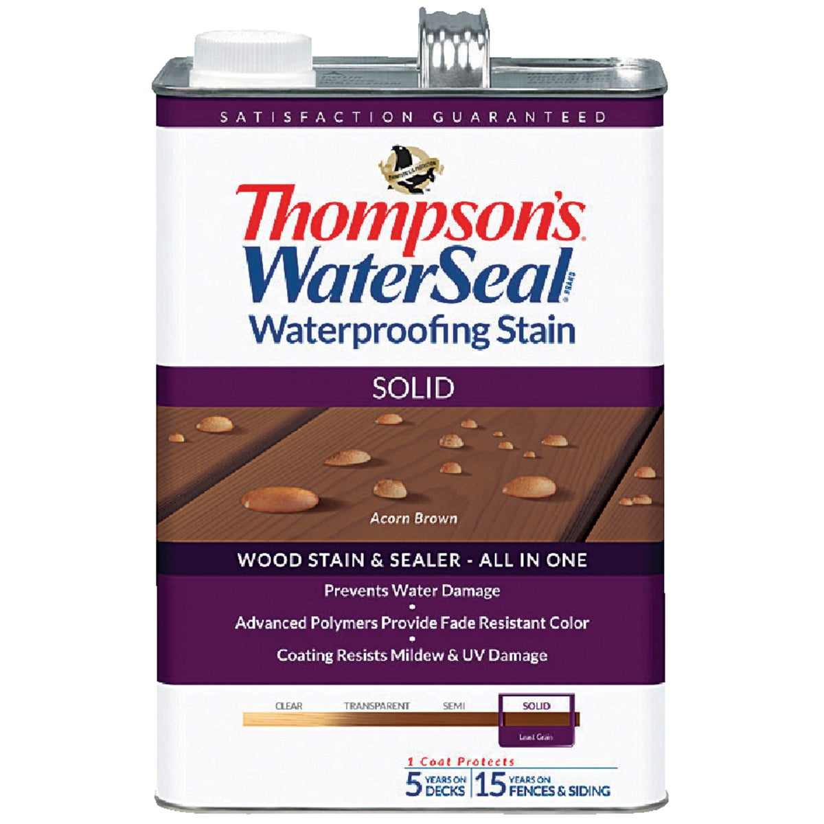 Thompsons WaterSeal Solid Waterproofing Stain, TH.043841-16
