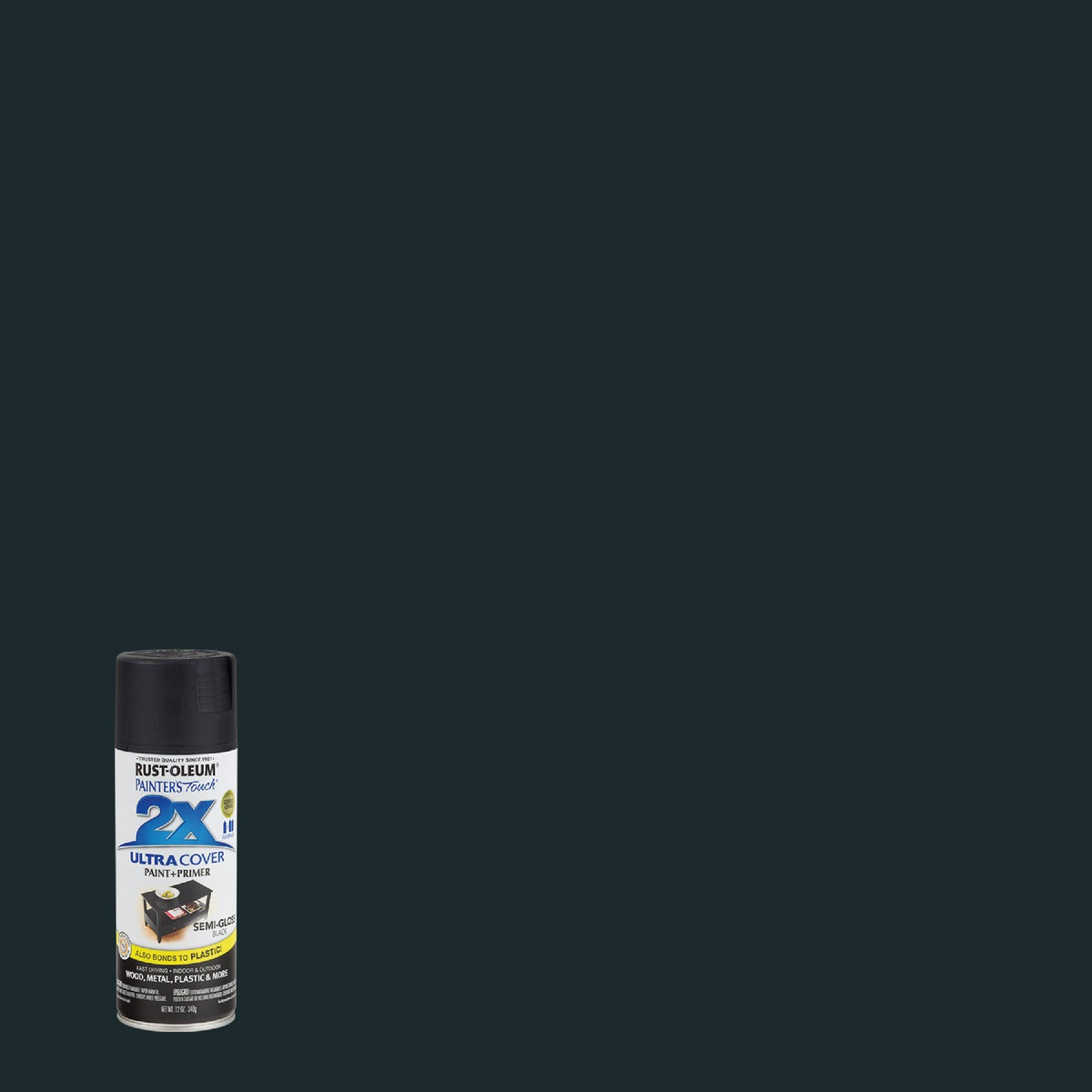 S/G BLACK SPRAY PAINT - 249061 by Rustoleum