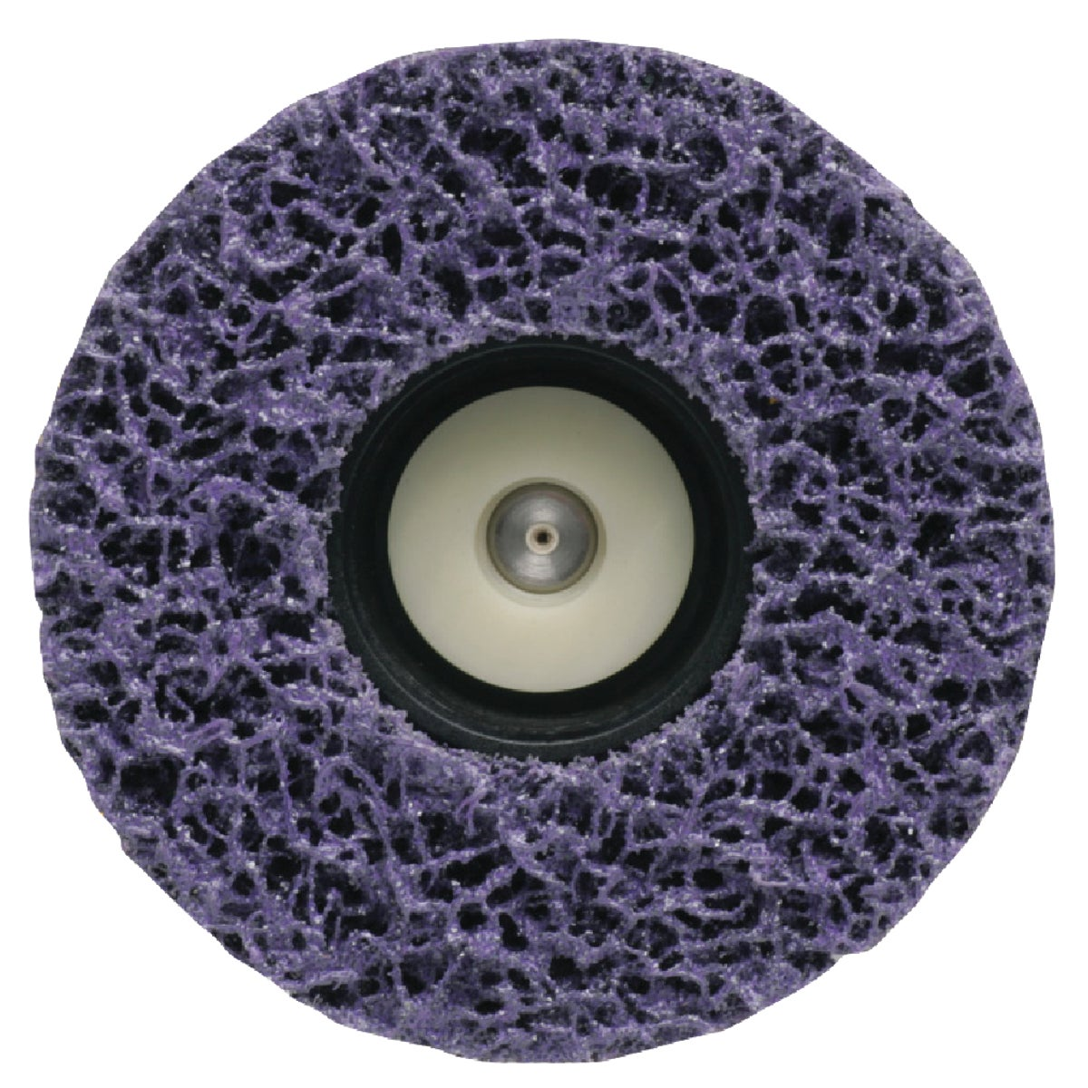 PAINT EATER REPLC DISC