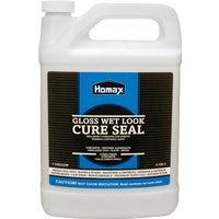 Homax Group Inc CLEAR CONCRETE SEALER 613