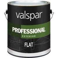 Valspar EXT FLAT WHITE PAINT 045.0012600.007