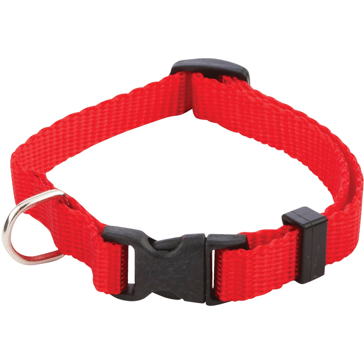 3/8X8-12 ADJ COLLAR - 31401 by Westminster Pet